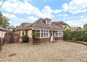 Thumbnail 2 bed detached bungalow to rent in Finches Lane, Twyford, Winchester, Hampshire