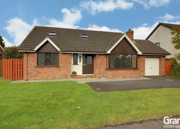 Thumbnail 4 bed detached house for sale in Cairndore Avenue, Newtownards