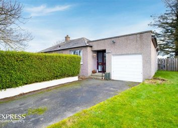 Thumbnail 3 bedroom detached bungalow for sale in Balmedie, Aberdeen