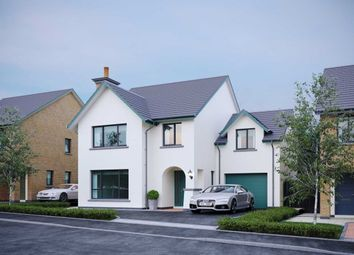 Thumbnail 4 bed detached house for sale in Crawfords Farm, Bangor West, Bangor