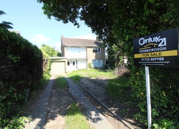 Thumbnail 3 bed detached house for sale in Dogsthorpe Road, Peterborough