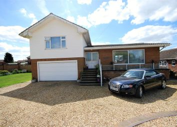 Thumbnail 4 bed detached house for sale in High Road, Whaplode, Spalding