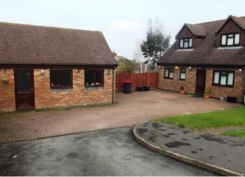 Thumbnail 4 bed bungalow to rent in Ravenswood Hill, Coleshill, Birmingham