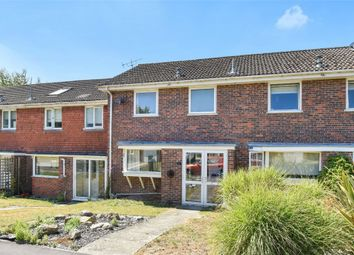 Thumbnail 3 bed terraced house for sale in Russett Close, Alresford
