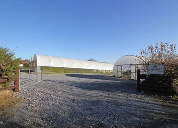 Thumbnail Commercial property for sale in Llangynog, Carmarthen, Carmarthenshire