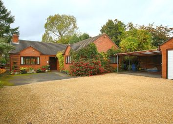 Thumbnail 4 bed detached bungalow for sale in Cemetery Road, Market Drayton