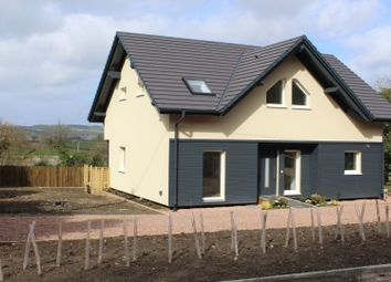 Thumbnail 4 bedroom detached house for sale in Leinthall Starkes, Ludlow