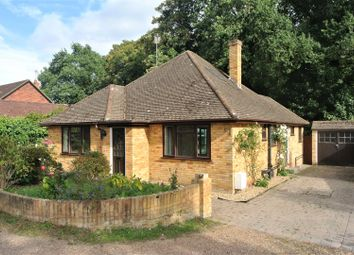 Thumbnail 4 bed bungalow to rent in Ottermead Lane, Ottershaw, Chertsey