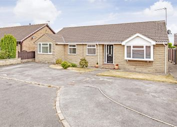 Thumbnail 4 bed detached bungalow for sale in Bennimoor Way, Walton, Chesterfield