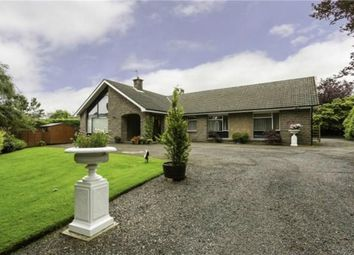 Thumbnail 4 bed detached bungalow for sale in Latch Road, Brechin, Angus