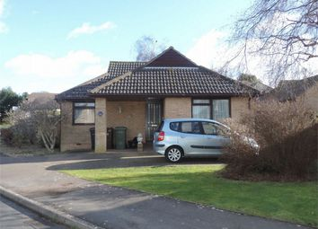 Thumbnail 3 bed detached bungalow for sale in Mansell Close, Bexhill On Sea, East Sussex