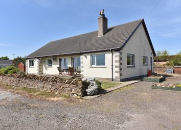 Thumbnail 4 bed bungalow for sale in Lower Newport, Berriedale, Caithness, Highland