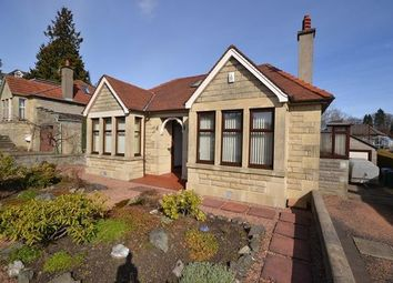 Thumbnail 3 bed detached bungalow to rent in Pitheavlis Crescent, Perth