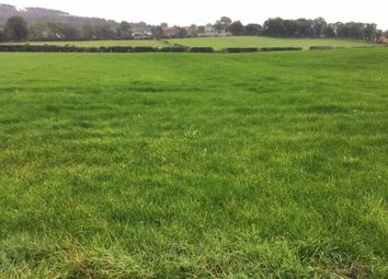 Thumbnail Property for sale in Carrickasticken Road, Forkhill, Newry