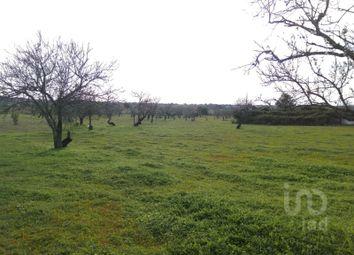 Thumbnail Land for sale in Guia, Guia, Albufeira