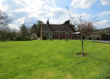 Thumbnail 2 bed detached bungalow to rent in Springfield, Stour Row, Shaftesbury, Dorset