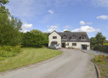 Thumbnail 6 bed property for sale in Holly Lodge, Valley Road, Saundersfoot, Pembrokeshire