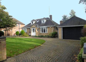 Thumbnail 4 bed bungalow for sale in Newland Park, Hull