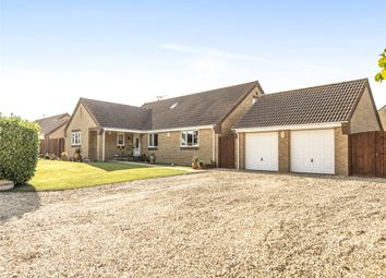 Holbear, Forton Road, Chard, Somerset TA20. 4 bed detached bungalow