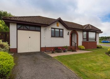 Thumbnail 3 bed bungalow for sale in Wellside Gardens, Balloch, Inverness, Highland