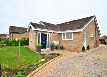 Thumbnail 3 bed detached bungalow for sale in Beech Drive, Branton, Doncaster