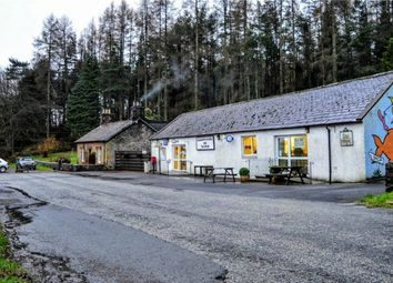 Thumbnail Commercial property for sale in Auldgirth Store, Post Office And Tea Room, Auldgirth, Dumfries