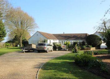 Thumbnail 3 bed bungalow to rent in Hebing End, Benington, Stevenage