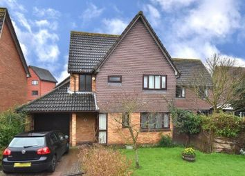 Thumbnail 3 bed detached house to rent in Cornflower Lane, Shirley Oaks, Croydon