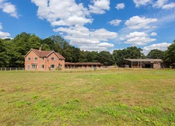 Thumbnail Commercial property for sale in Doctors Hill Farm, Doctors Hill, Hevingham, Norwich, Norfolk