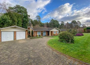 Thumbnail 3 bedroom detached bungalow to rent in Spinney Close, Cobham