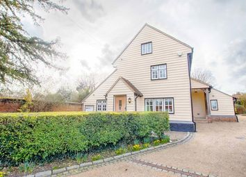 Thumbnail 3 bed detached house to rent in High Street, Much Hadham