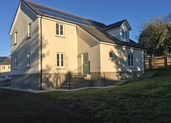 Thumbnail 4 bedroom detached house for sale in Nevern (Plot 27), Green Meadows Park, Narberth Road, Tenby