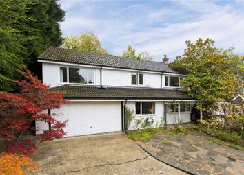 Thumbnail 4 bed detached house for sale in Bramble Bank, Frimley Green, Camberley
