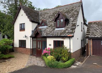 Thumbnail 4 bed property for sale in Devauden, Chepstow