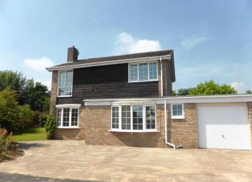 Thumbnail 3 bed detached house to rent in Barnes Green, Spital