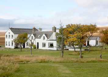 Thumbnail Hotel/guest house for sale in The Garvault Hotel, By Kinbrace, Sutherland