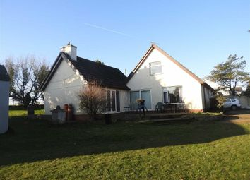 Thumbnail 4 bed detached bungalow for sale in Felinwynt, Cardigan