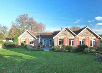 Thumbnail 4 bed detached bungalow for sale in West Street, Tytherington, Wotton-Under-Edge