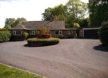 4 bed detached bungalow for sale in Sandhurst Lane, Bexhill-On-Sea TN39
