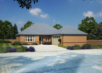 Thumbnail 3 bed bungalow for sale in Stanbury Meadows, Camomile Way, Newton Abbot, Devon