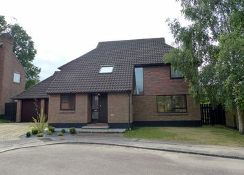 Thumbnail 4 bedroom detached house for sale in Higher Mead, Lychpit, Basingstoke