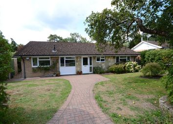 Thumbnail 3 bed detached bungalow for sale in Winston Walk, Lower Bourne, Farnham