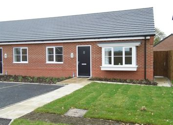 Thumbnail 2 bed bungalow to rent in Wilding Drive, Crewe