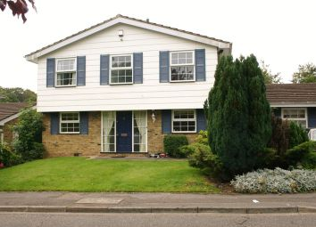 Thumbnail 4 bed detached house to rent in Copperfields, Beaconsfield