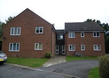 Thumbnail 2 bed flat to rent in The Hampdens, Newbury
