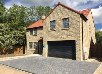 Thumbnail 5 bedroom detached house for sale in Beech Crescent, Heighington Village, Newton Aycliffe