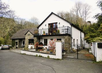 Thumbnail 2 bed detached house for sale in Cenarth Mill, Cenarth, Newcastle Emlyn