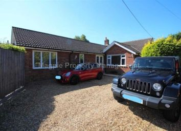 Thumbnail 3 bed bungalow to rent in Kimbolton Road, Bolnhurst, Bedford