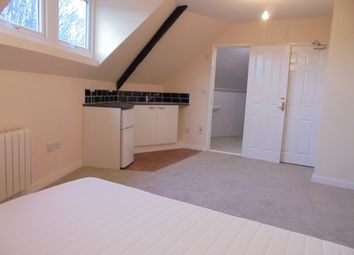 Thumbnail Studio to rent in Crabtree Close, Sheffield