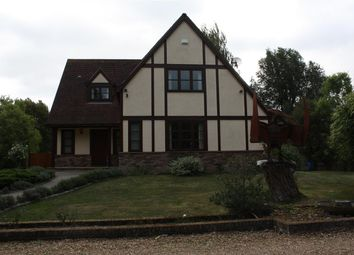 Thumbnail 4 bed detached house to rent in Dene End, London Road, St Ives